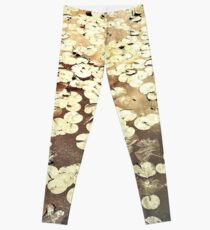 Golden Lily Pads - Art Photography - Nature Decor Leggings
