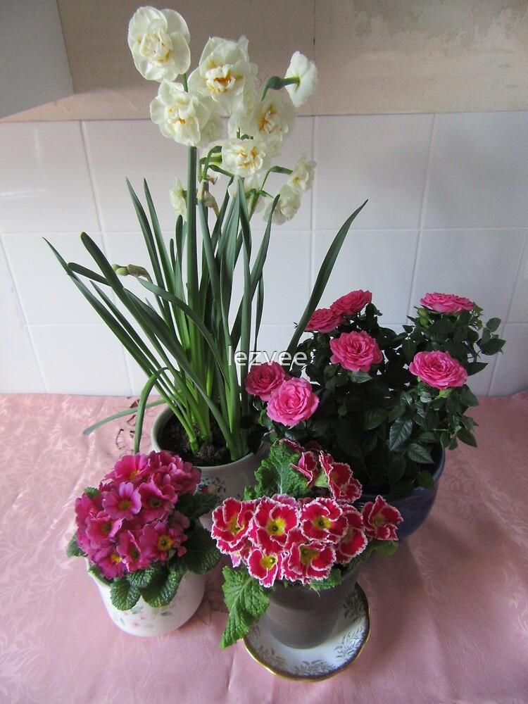 Blumen zum Muttertag Sonntag von lezvee