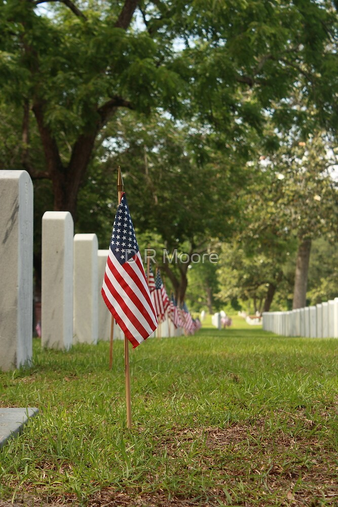 Memorial Day by D R Moore