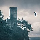 """""""The Tower Of Kinnoull Hill"""" by Cat Burton by Cat Burton"""