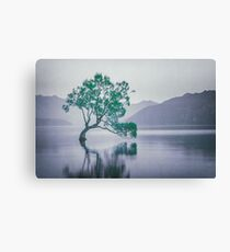"""The Tree In The Lake"" by Cat Burton Canvas Print"