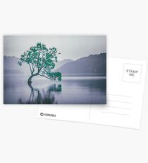 """The Tree In The Lake"" by Cat Burton Postcards"