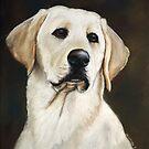 Labrador Retriever by Charlotte Yealey