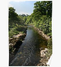 River Dart-Buckfastleigh Devonshire UK Poster