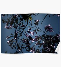 Electric Flowers II 3838 Poster