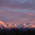 Sunset's Alpenglow by Jackie Muncy