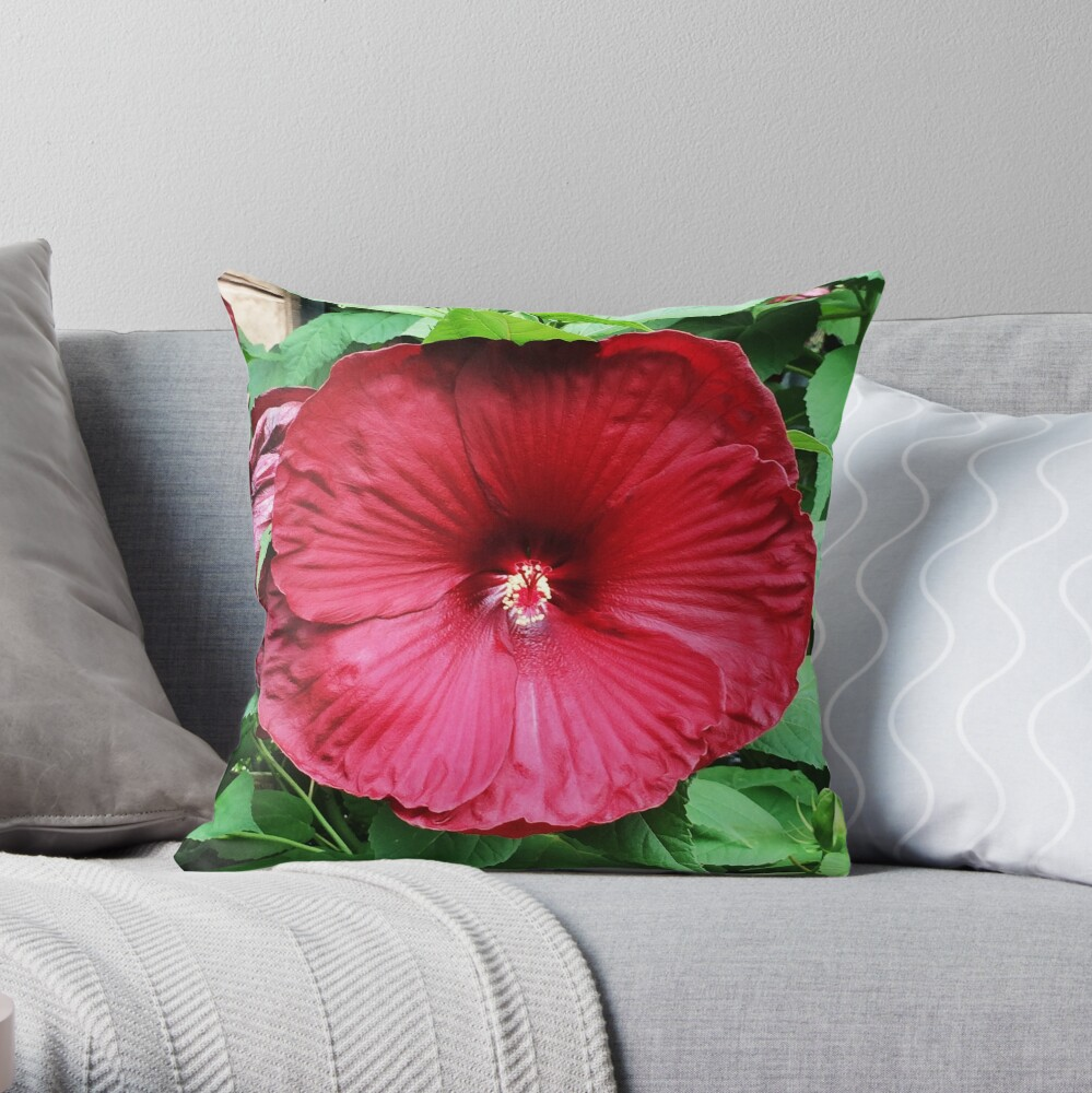Hibiscus High - Tropical Flower Art Photo by OneDayOneImage - Gift for Gardener - Flower Lover Throw Pillow