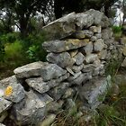 Rock Fence by Bill Morgenstern