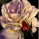 Rose and Bud by Martha  Hayes