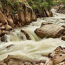 Cascading Colorado Rocky Mountain Stream by Bo Insogna