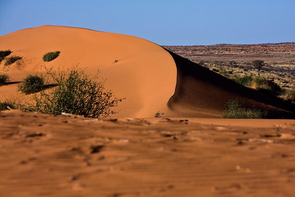 Birdsville Dune No 1 by Hedoff