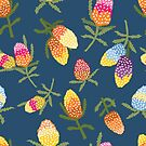 Funky colourful banksias by thatsgraphic