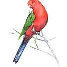 Australischer König Papagei von Louise De Masi