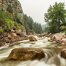 South St Vrain Canyon Boulder County Colorado by Bo Insogna