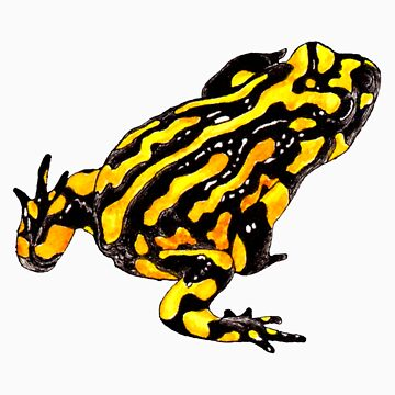 Corroboree frog single tee by LauraGrogan