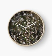 Winter-bleached Heather Clock
