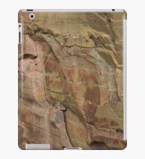 Slieve Bloom Sandstone iPad Case/Skin