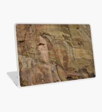 Slieve Bloom Sandstone Laptop Skin