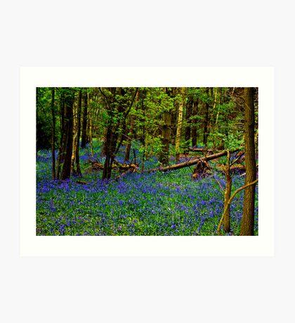 Rhapsody in Blue Art Print