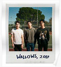 wallows polaroid circa 2017 Poster