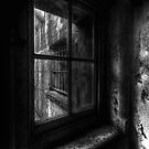 View from the Asylum window by Richard Horsfield
