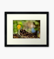 Yellow Cap Framed Print