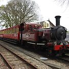 Isle of Man Steam Train Photo by tribbledesign