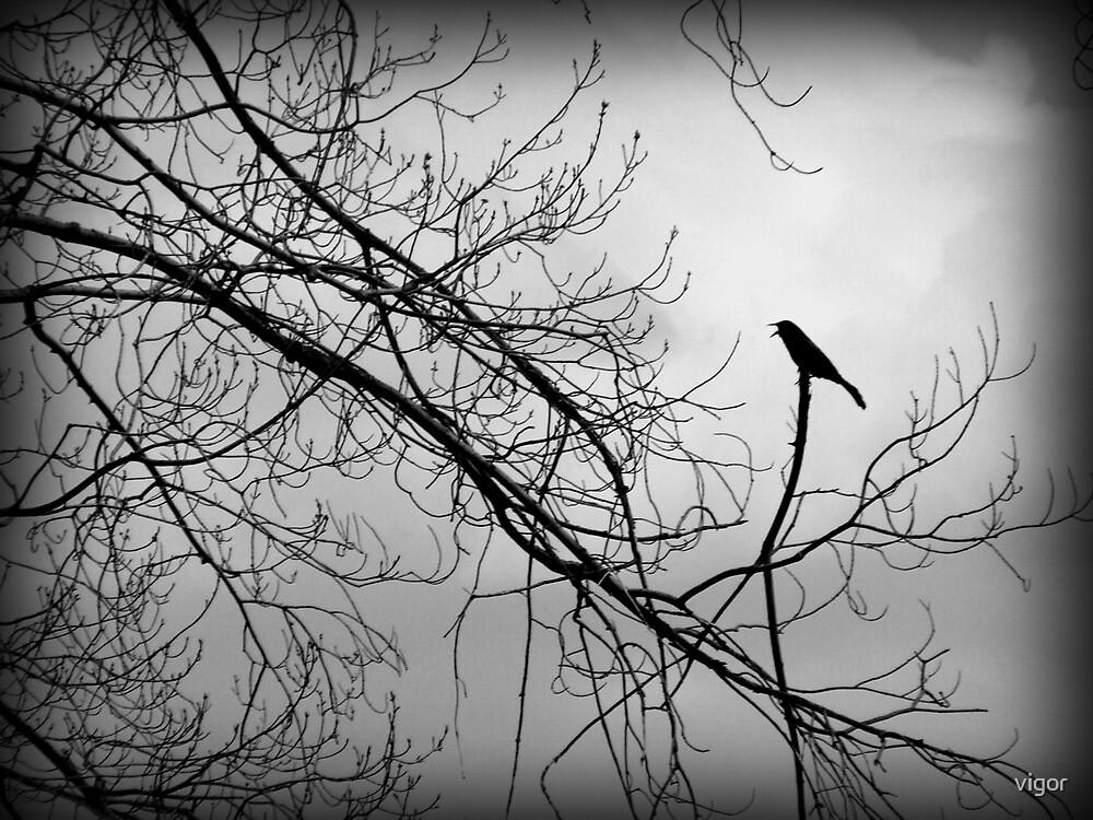 The Guard Bird by vigor