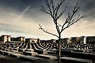Memorial Landscape by Farfarm