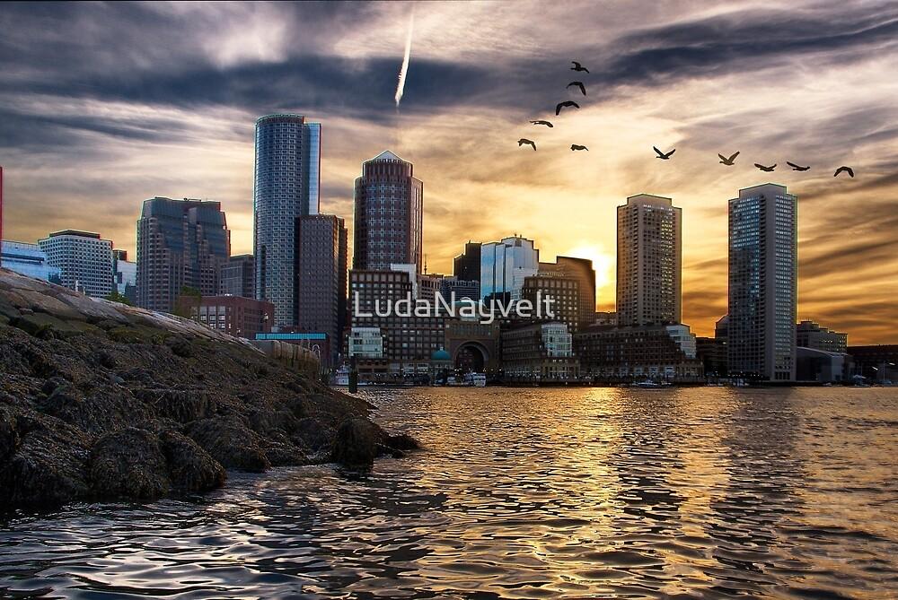 Boston Harbor at Sunset by LudaNayvelt