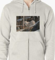 Arctic Wolf Pup Zipped Hoodie