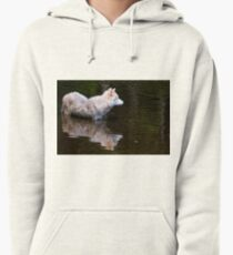 Arctic Wolf Pullover Hoodie