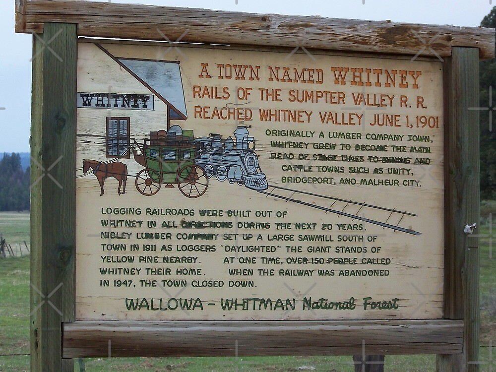 Ghost Towns - Whitney, Oregon by Betty  Town Duncan