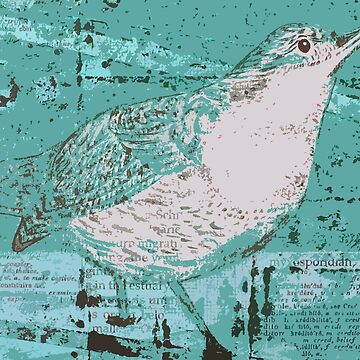 Dipper Bird Teal by peaceofpistudio