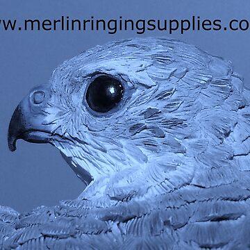 Merlin P1 by Merlin13
