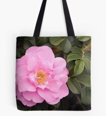 A Flavour of Pink Tote Bag