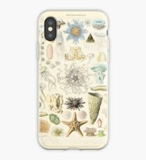Adolphe Millot ocenaographie iPhone Case
