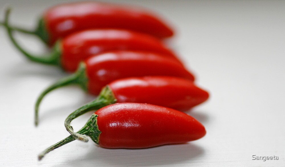 Spicy by Sangeeta