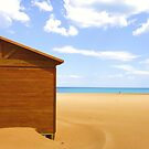 Beach stroll by shortarcasart