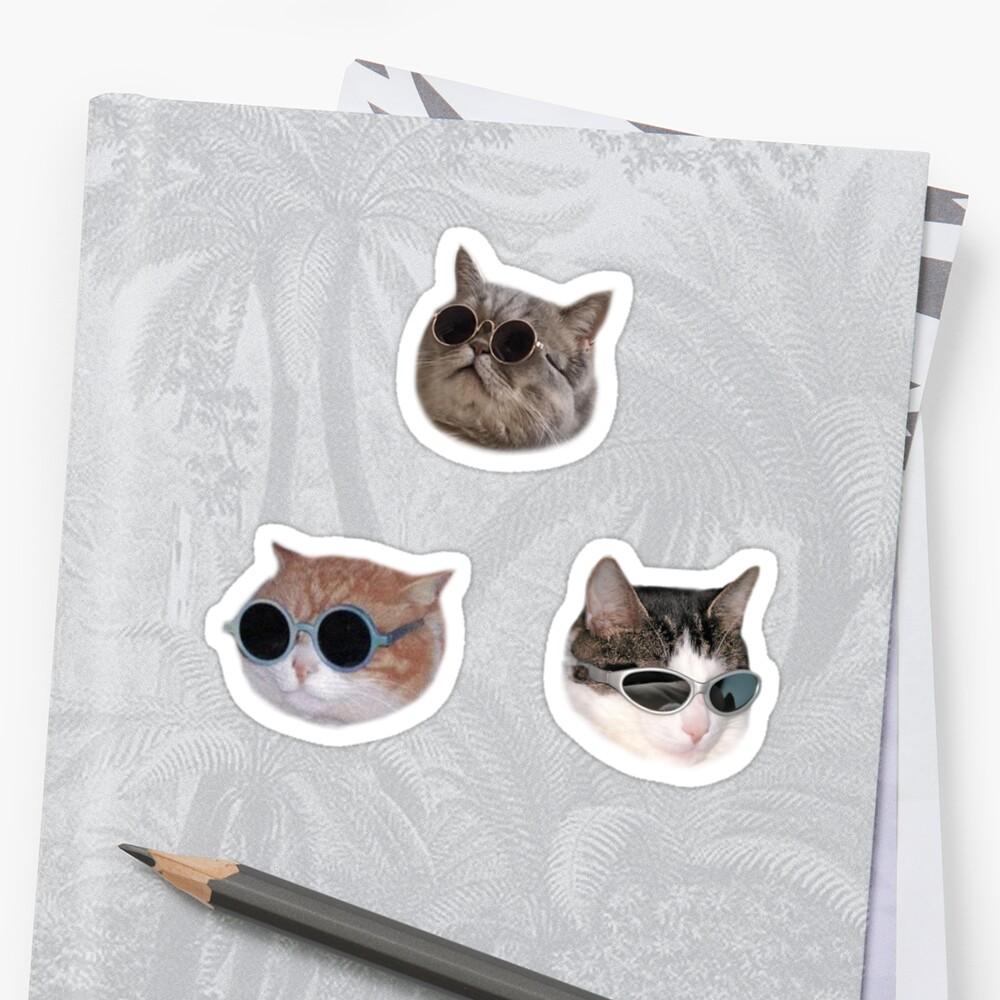 Cooles Kätzchen Sticker-Pack Sticker