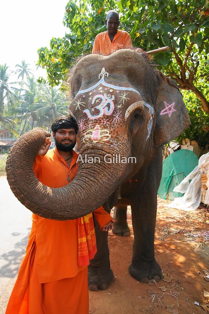 Temple elephant by Alan Gillam