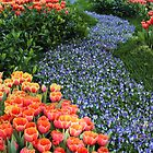 «Pavimentado en flores» de Varcoe