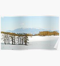 Snowy pass above Escalante, UT Poster