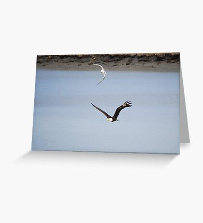 Chasing an Eagle  Greeting Card