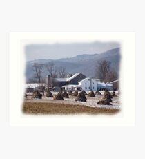 Amish Winter Serenity Art Print