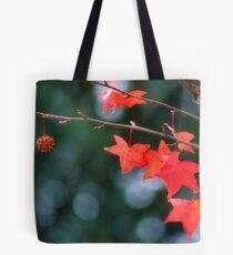 ~ Sweetgum Fall ~ Tote Bag