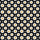 Daisies Pattern (black background) by sirwatson