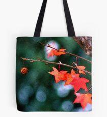 Sweetgum Fall Tote Bag