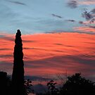 Autumn Dawn Canberra by Deirdreb