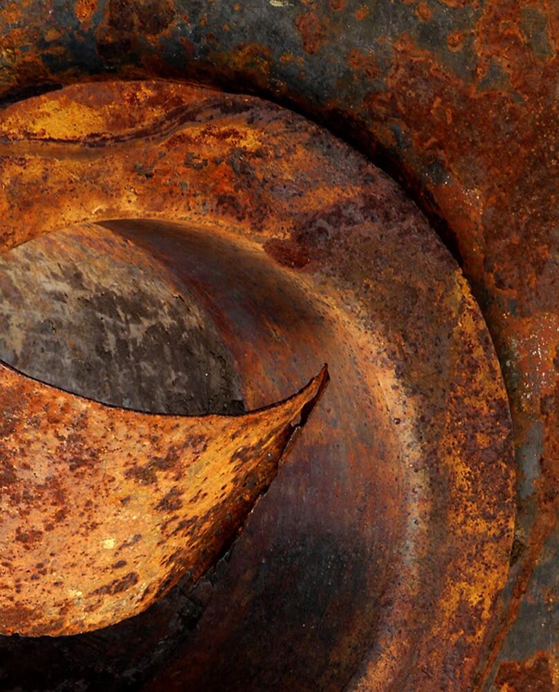 Curled by Elizabeth McPhee